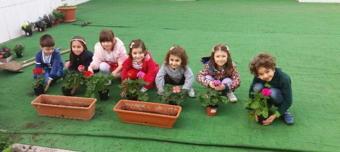 Clasa Pregatitoare – plantare flori de primavara